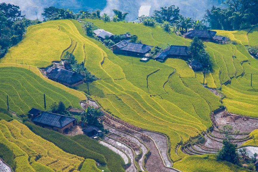 Ngỡ ngàng vẻ đẹp ruộng bậc thang Hoàng Su Phì mùa lúa chín - 2